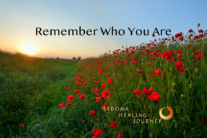 Field of red flowers with title Remember Who You Are