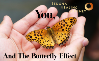 You And The Butterfly Effect